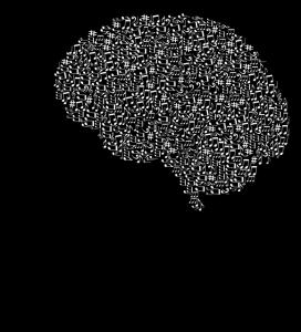 cranium-3244109_640